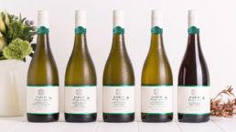 Spitfire Digital Agency Auckland - portfolio - babich wines 13