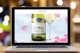 Spitfire Digital Agency - portfolio-oyster-bay-wines-5