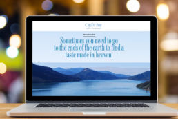Spitfire Digital Agency - portfolio-oyster-bay-wines-4