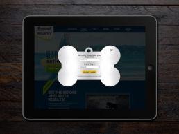 Spitfire Digital Agency - portfolio - zoetis - canine artritis8