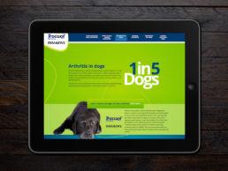 Spitfire Digital Agency - portfolio - zoetis - canine artritis6