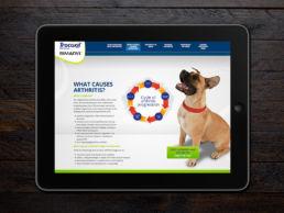 Spitfire Digital Agency - portfolio - zoetis - canine artritis5