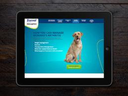 Spitfire Digital Agency - portfolio - zoetis - canine artritis3
